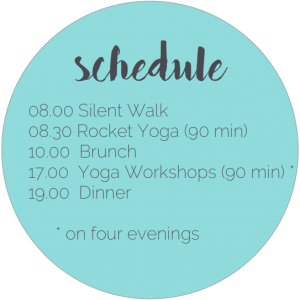 rocket yoga retreat 2017
